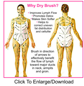 The Lymph System Breastresearchawareness Com